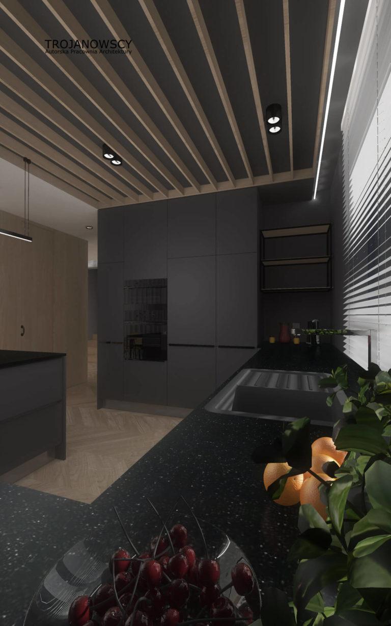 ciemna kuchnia nowoczesny design